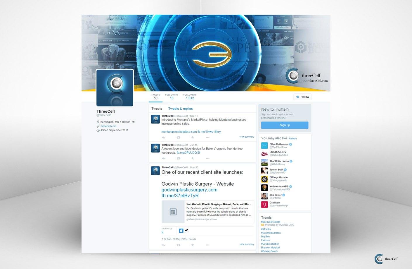 ThreeCell - Twitter Social Media Design